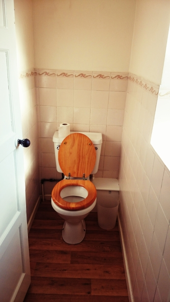 The toilet upstairs