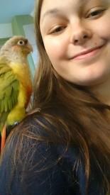 Bird selfie