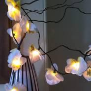 Fairy lights!