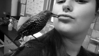 Kiss from Bob