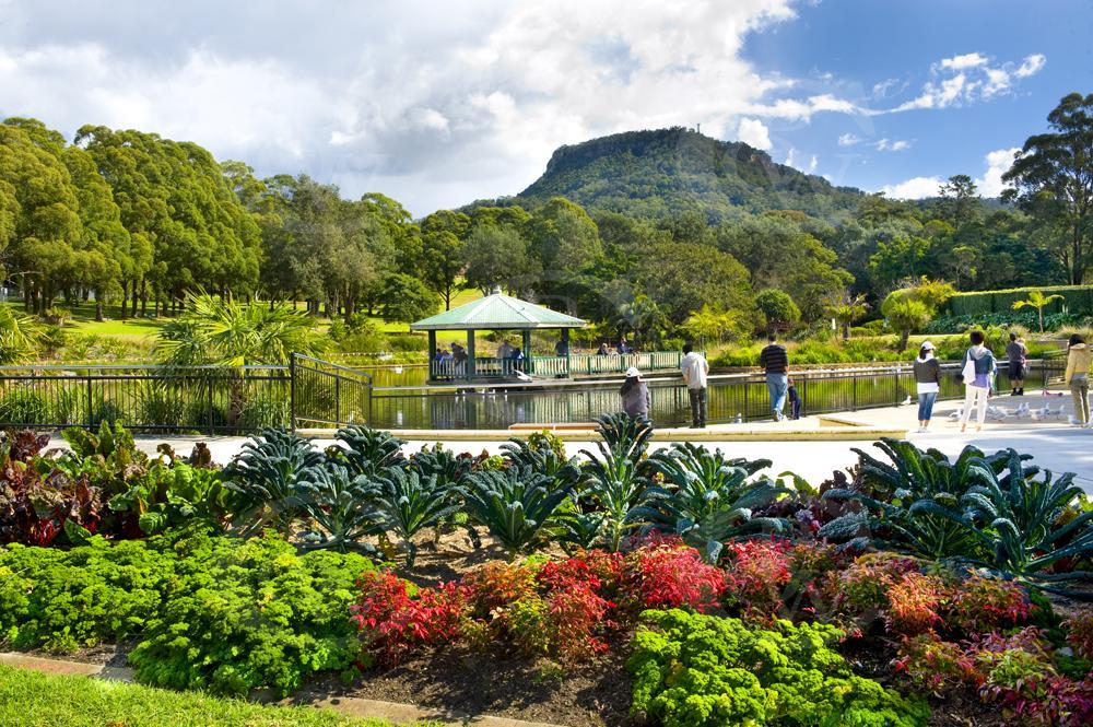 Scw0008 botanic gardens wollongong nsw dsc0843 the for Landscape design courses sydney