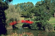 © M. Fagg Australian National Botanic Gardens